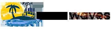 Cash Waves Logo